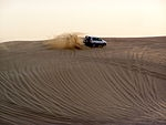 Dubai \'The Arabian Safari\' tour